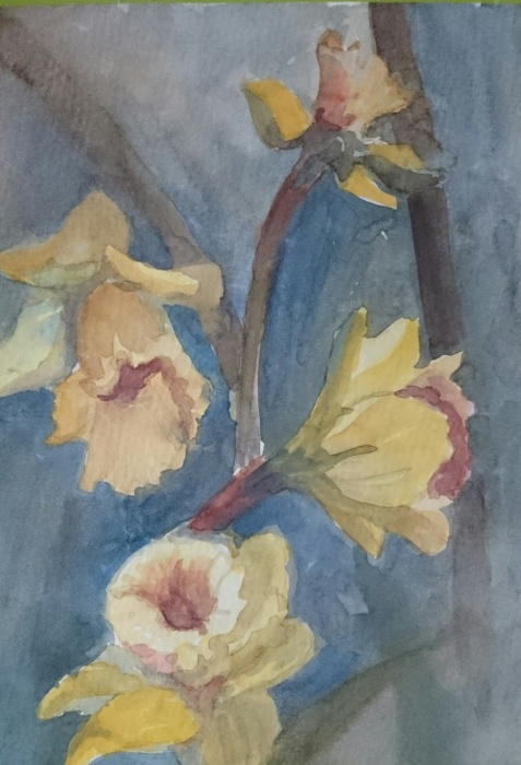 image, flower, water color